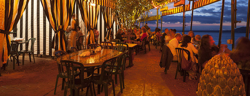 Outdoor Patio dining at the Dead Fish